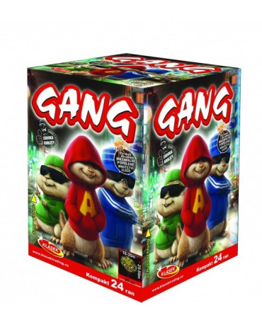 Gang 24 rán  8ks/CTN
