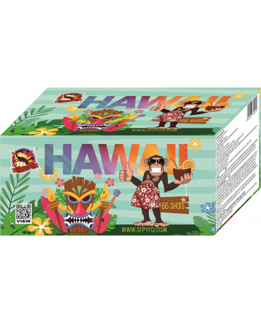 Hawaii 66r 20mm