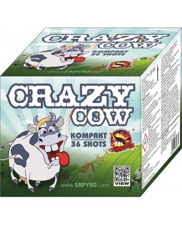 Crazy cow 36r 25mm 8ks/CTN
